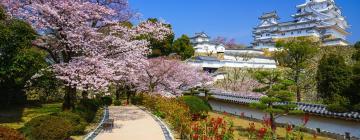 Hotels in Hyogo