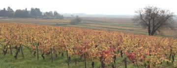Hotels in Burgundy vineyards