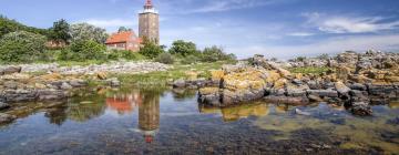 Wille w regionie Bornholm