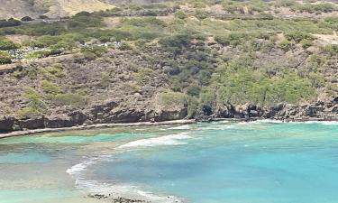 Hotels in The Big Island
