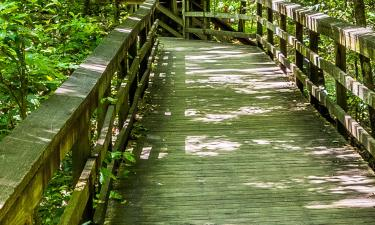 Hotels in Congaree National Park