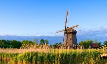 Vacation Homes in Kop van Noord-Holland