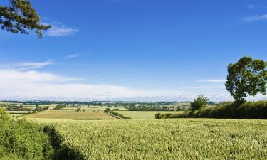Hôtels dans cette région: Bedfordshire