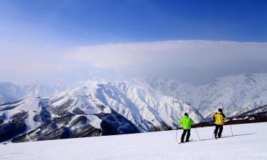 Pet-Friendly Hotels in Hakuba Ski
