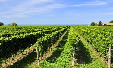 Hotéis em: Niagara Falls and Wine Country