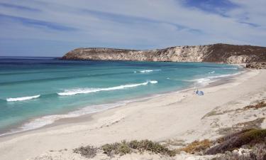 Pet-Friendly Hotels on Kangaroo Island
