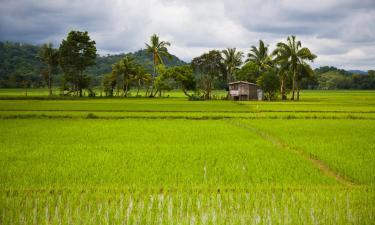 Family Hotels on Mindoro
