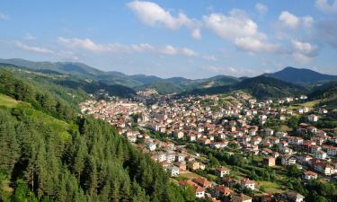 Villas in Smolyan Province