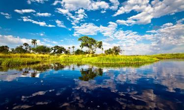 Lodges in Okavango Delta