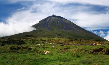 Farm stays on Pico island