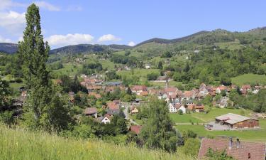 B&B/Chambres d'hôtes dans cette région: Vosges du Nord