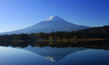 Properties with Onsen in Mount Fuji