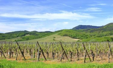 B&B/Chambres d'hôtes dans cette région: Route des vins d'Alsace
