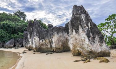 Hotels in Camarines Sur