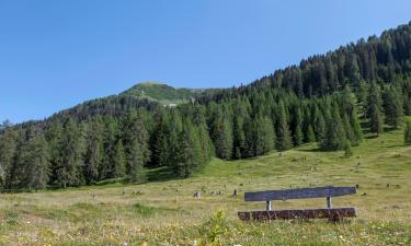 Spa hotels in Bad Kleinkirchheim - Nock Mountains National Park