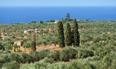 Hôtels dans cette région: Messinia