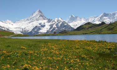 Hotels in Bernese Oberland