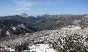 Hotéis em: Snowy Mountains