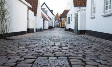 Bed & breakfast-steder i Syddanmark