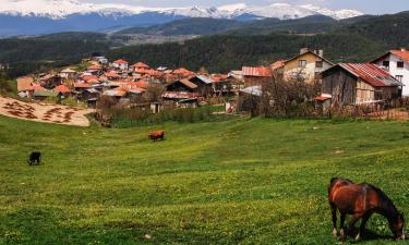 Hotels in Rhodope Mountains