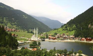 Hotels in Black Sea Region