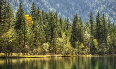 Hotels in Bavarian Forest