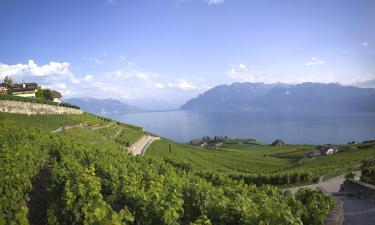Hotels in der Region Genfer See