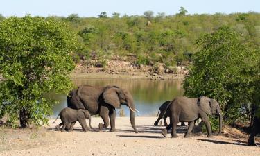 Accommodation in Kruger National Park
