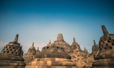 Pet-Friendly Hotels in Central Java