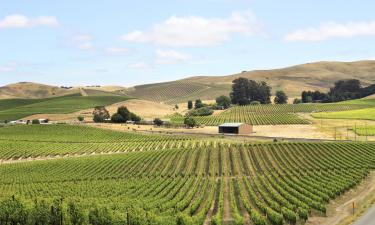 Hotels in Napa Valley Wine Country