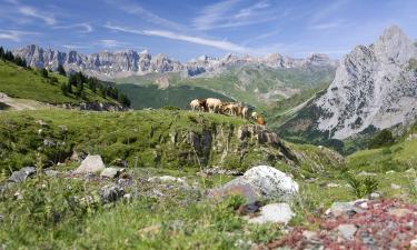 Hôtels dans cette région: Pyrénées