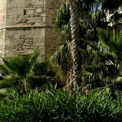 Sfax 10 apartments