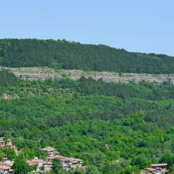 Veliko Tarnovo Province  114 guest houses