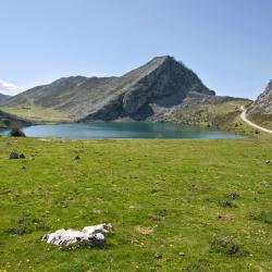 Asturias 15 luxury hotels