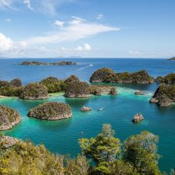 Raja Ampat 5 resorts