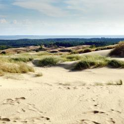 Curonian Spit 393 vacation rentals