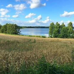 Braslavskie Lakes 7 country houses