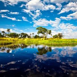Okavango Delta 8 Glamping Sites