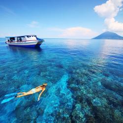 Norte de Sulawesi