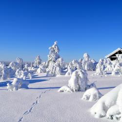 Saariselka Ski