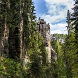 Adršpach-Teplice Rocks 5 vacation homes