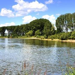 Rein (Niederrhein)
