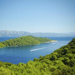 Mljet Island 80 beach hotels