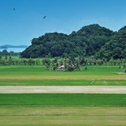 Kedah 51 resorts