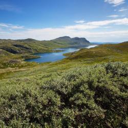 Telemark 33 Ferienwohnungen