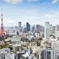 Planificați-vă logistica pentru Japonia