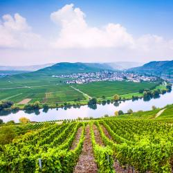 German Mosel 40 hotels with pools