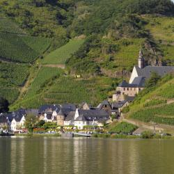 Rhénanie-Palatinat