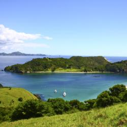 North Island 366 homestays