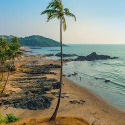 North Goa 235 resorts